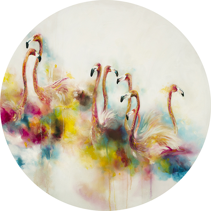 plumage-1